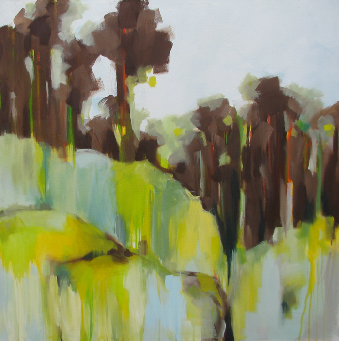 Trees and paddocks