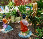 offering to lord buddha