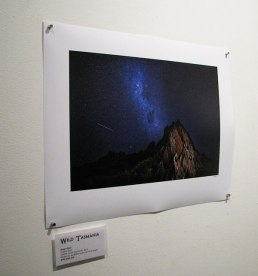 Tarkhine stars by Arwen Dyer