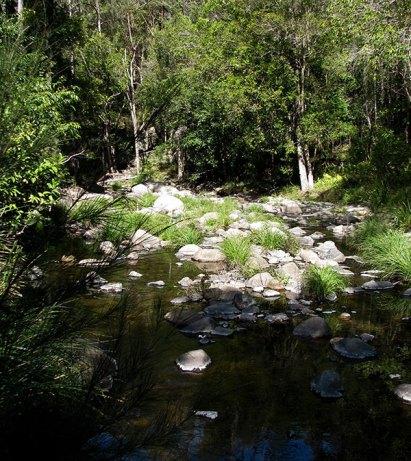 Cedar creek 1