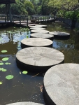 Round steps with a pattern in a lake