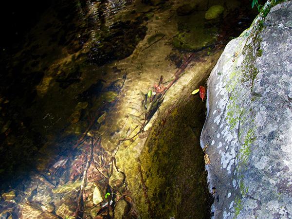 Quiet creek