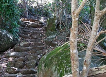 Steps-to-the-falls