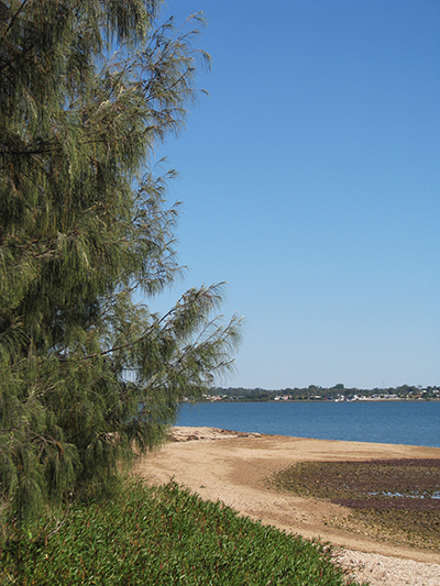 View from the island
