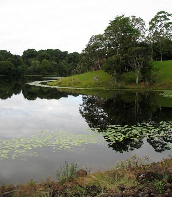Reflections,-Rocky-Creek-Dam,-Northern-NSW,-Australia