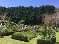 paterre-gardens