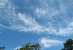 Breezy sky