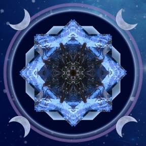 Seahorse Moon