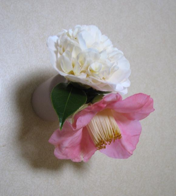 Camellias in bud vase