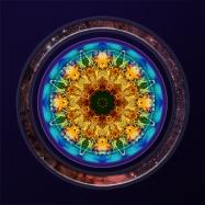 Web of existence mandala