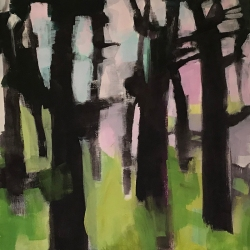 Dry forest 1