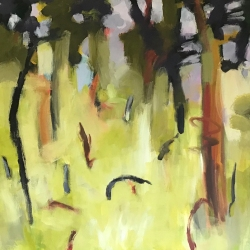 Dry forest 3