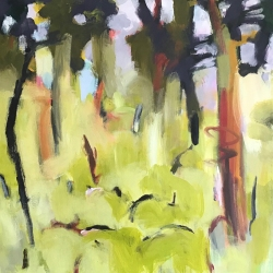 Dry forest 6